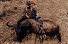 Big Wildebeest