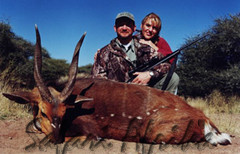Mike's great Bushbuck